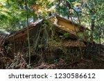 old abandoned japanese house... | Shutterstock . vector #1230586612