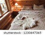 rustic interior of log cabin... | Shutterstock . vector #1230647365