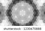 gray geometric design  gray...   Shutterstock .eps vector #1230670888
