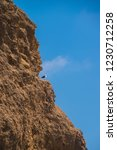 Brown Cliff Rock Formation With ...