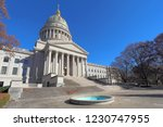 front entrance and dome of the... | Shutterstock . vector #1230747955