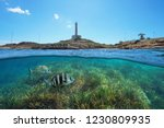 coastline with a lighthouse at... | Shutterstock . vector #1230809935