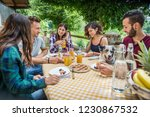 happy cheerful  group of... | Shutterstock . vector #1230867532