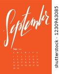 lettering calendar for 2019. a4 ... | Shutterstock .eps vector #1230963085