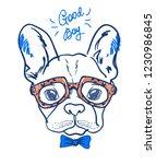 portrait of a bulldog in... | Shutterstock .eps vector #1230986845