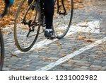 the bike passes along the... | Shutterstock . vector #1231002982