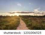 the road to the sunset. sunlit... | Shutterstock . vector #1231006525