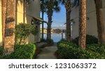destin beach florida modern... | Shutterstock . vector #1231063372
