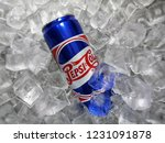 shah alam  malaysia   10... | Shutterstock . vector #1231091878