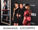 new york  ny   november 14 ... | Shutterstock . vector #1231100992