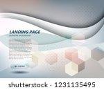 website landing page abstract... | Shutterstock .eps vector #1231135495