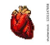 heart organ in pixel art  8 bit ...   Shutterstock .eps vector #1231147858