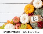 top view of  autumn maple... | Shutterstock . vector #1231170412
