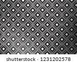 light silver  gray vector...   Shutterstock .eps vector #1231202578