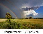 Small photo of double rainbow in the stormy dark skyand a lone tree in nature and a lone tree in nature