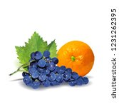 fresh grapes  nutritious and... | Shutterstock .eps vector #1231262395