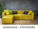 living room interior | Shutterstock . vector #1231461082