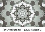 gray kaleidoscope patterns.... | Shutterstock . vector #1231480852