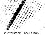abstract background. monochrome ... | Shutterstock . vector #1231545022