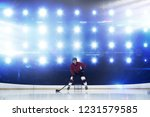 player playing ice hockey... | Shutterstock . vector #1231579585