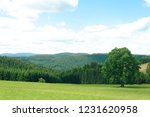 fields of schwarzwald | Shutterstock . vector #1231620958