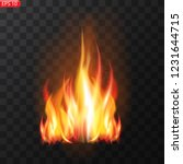 realistic burning fire flames... | Shutterstock .eps vector #1231644715