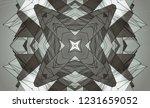 gray kaleidoscope patterns.... | Shutterstock . vector #1231659052