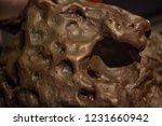 fragment of meteorite  close up....   Shutterstock . vector #1231660942