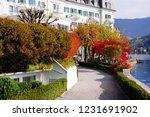 zell am see  austria   may 20 ... | Shutterstock . vector #1231691902