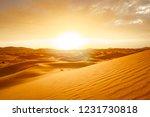 sunrise sahara desert dunes... | Shutterstock . vector #1231730818