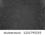 abstract background. monochrome ... | Shutterstock . vector #1231795255