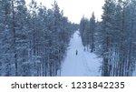aerial  man walking on road...   Shutterstock . vector #1231842235