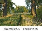 Rustic Path Meanders Forward...