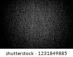 abstract background. monochrome ... | Shutterstock . vector #1231849885