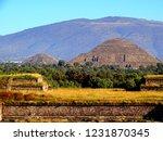 mexico  pre hispanic city of... | Shutterstock . vector #1231870345