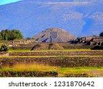 mexico  pre hispanic city of... | Shutterstock . vector #1231870642