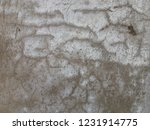 texture unique in wall old ... | Shutterstock . vector #1231914775