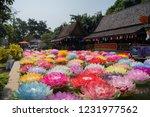 phitsanulok  thailand  ... | Shutterstock . vector #1231977562