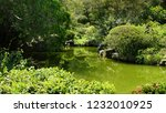 green japanese garden on... | Shutterstock . vector #1232010925