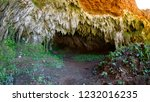 ave with stalactites and... | Shutterstock . vector #1232016235