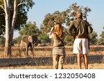 mana pools   june 2014 ...   Shutterstock . vector #1232050408