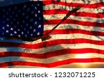 illustration of an eagle with... | Shutterstock . vector #1232071225