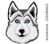 husky breed dog face muzzle... | Shutterstock .eps vector #1232083615