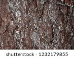 stone structure brown largely | Shutterstock . vector #1232179855