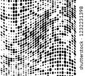 the texture of halftone black... | Shutterstock .eps vector #1232231398