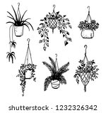 set of potted house plants ... | Shutterstock .eps vector #1232326342