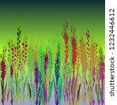 multicolored spica background...