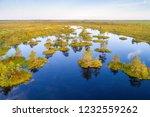 aerial shot of yelnya swamp ... | Shutterstock . vector #1232559262