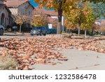 Pile Of Dried Raked Leaves On...