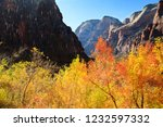 fall foliage at weeping rock in ... | Shutterstock . vector #1232597332